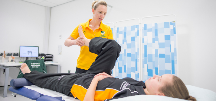 Physiotherapists working with a client