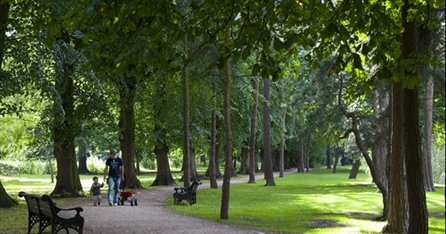 Beech-Avenue-at-University-Park
