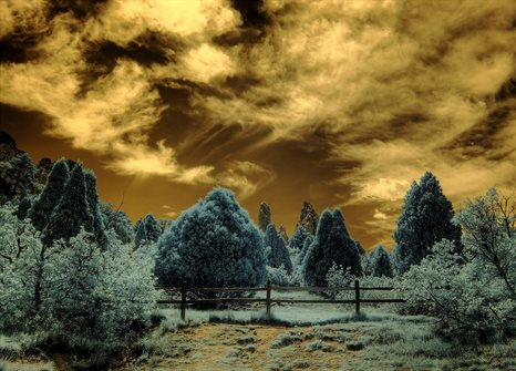 Infrared HDR Garden of the Gods Colorado