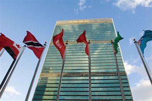 Distance-Learning---UN-Flags