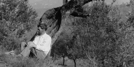 Black and white image of the author DH Lawrence sat underneath a tree