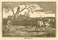 Illustrations of ploughing and reaping