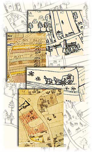 Montage of images from Laxton maps