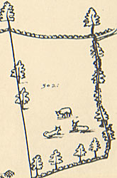 Detail from 1635 map showing animals grazing