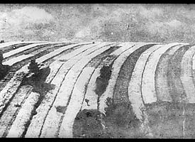 Slide showing strips in an open field, in different stages of cultivation, 20th century