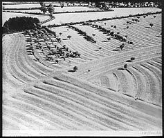 Slide showing ridge and furrow, 20th century