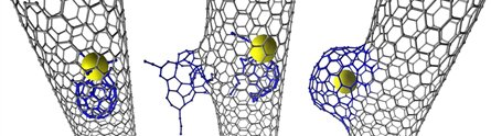 Carbon nanotubes with NanoBuds