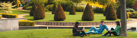 Postgraduate students relaxing in the Millennium Garden on University Park
