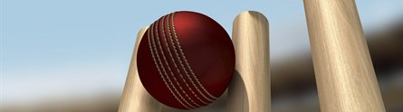 A cricket ball hitting the stumps
