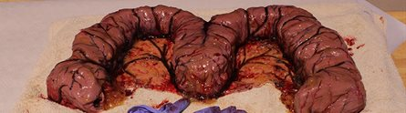 World's Grossest Cake