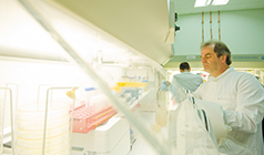 Research proposal for phd in molecular biology