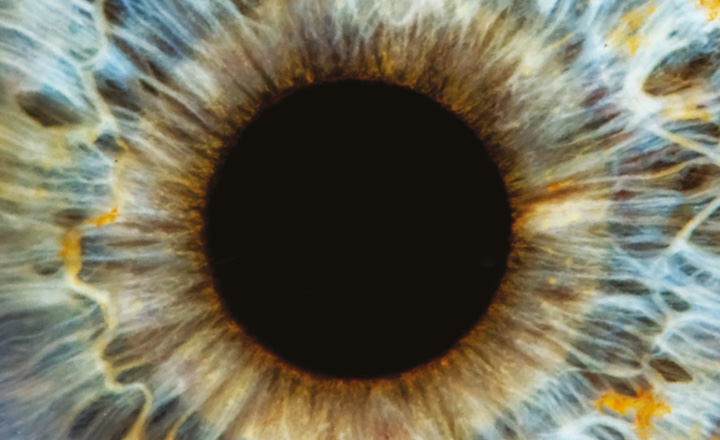 Close up of an iris of an eye