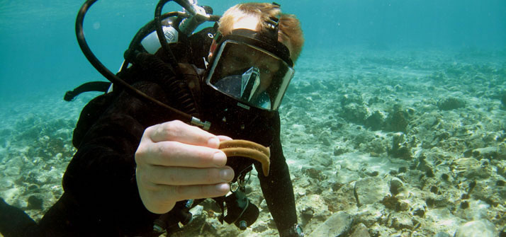 Pavlopetri underwater archaeology project