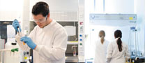 Students in the lab: Research