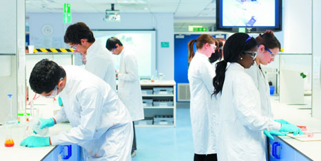 Pharmacy subjects to study at college
