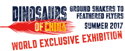 dinasours-of-china-logo-2
