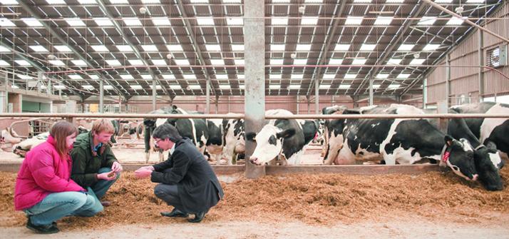 Herd Health - The University of Nottingham