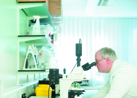 Male technician looking into a microscope