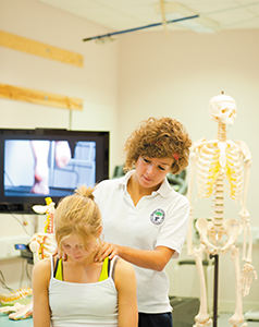 Physiotherapy and Rehabilitation Sciences