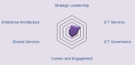 Strategic Leadership Maturity Model