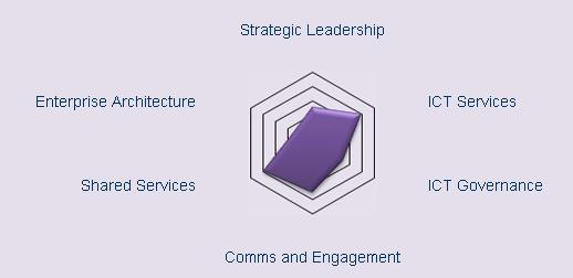Strategic Maturity Model