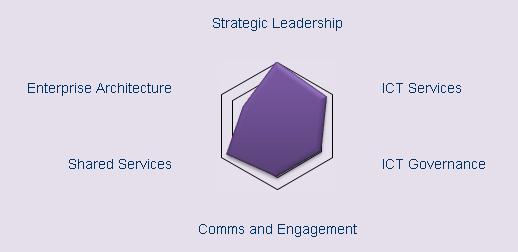 Transformational Maturity Model