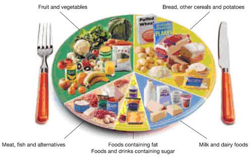 Healthy Food Van Uk
