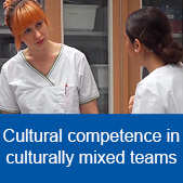 Cultural competence in culturally mixed teams