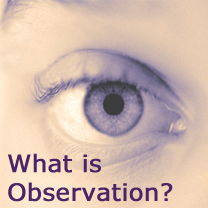 RLO Participant and non-participant observation - making the right choice