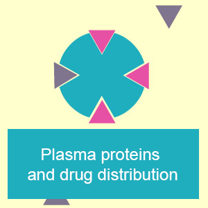 Plasma proteins and drug distribution